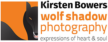 wolf shadow photography logo